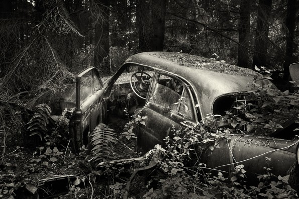 © Sven Fennema